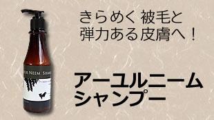 アーユルニーム<br>シャンプーのイメージ