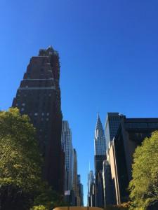 NY-image1