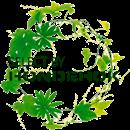 greenSELECTBY3