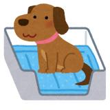 pet_toilet_sheet_dog